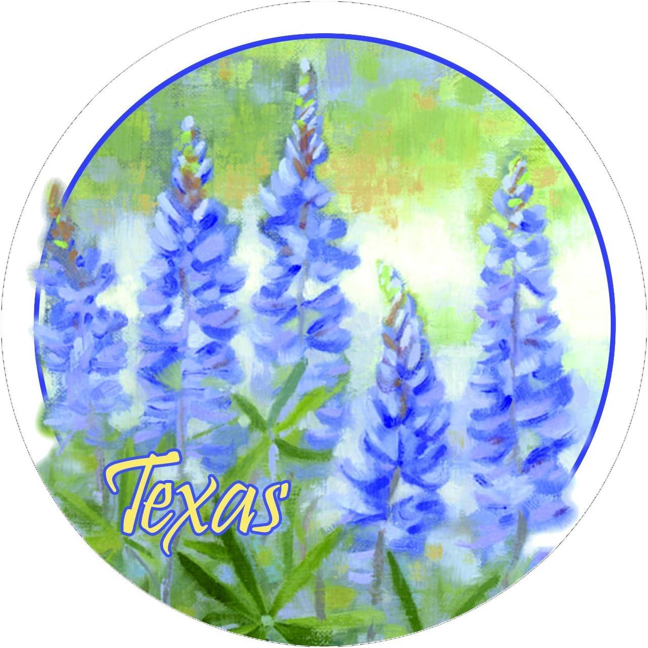 Thirstystone Stoneware Coaster Set, Bluebonnets - Texas