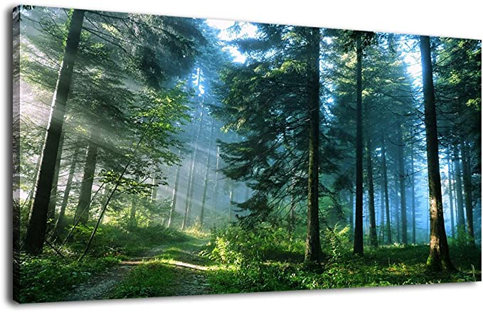 Artewoods Canvas Wall Art Forest Morning Pictures Modern Large Nature Canvas Art Contemporary Green Big Trees Road Sunrise Foggy Woods Landscape For Kitchen Office Home Decoration 24 X 48 Paintings
