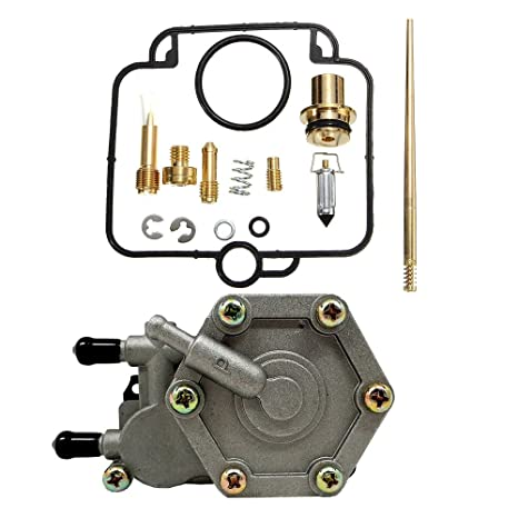 OxoxO Carburetor Carb Repair Rebuild Kit Fuel