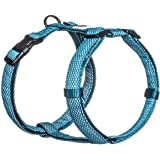 Embark Illuminate Reflective Dog Harness – Easy On and Off, No Choke Dog Walking Harness - Be Seen from All Angles - Dog Harnesses for Most Breeds