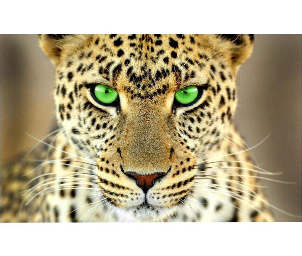 Ahorre 35% - 70% de descuento Rompecabezas para adultos Leopard Memory Enhancement Enhancement Enhancement 1000 Piece  gran descuento