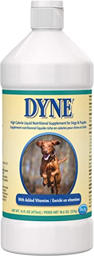 Dyne High Calorie Weight Gainer Liquid for Dogs, 16 oz