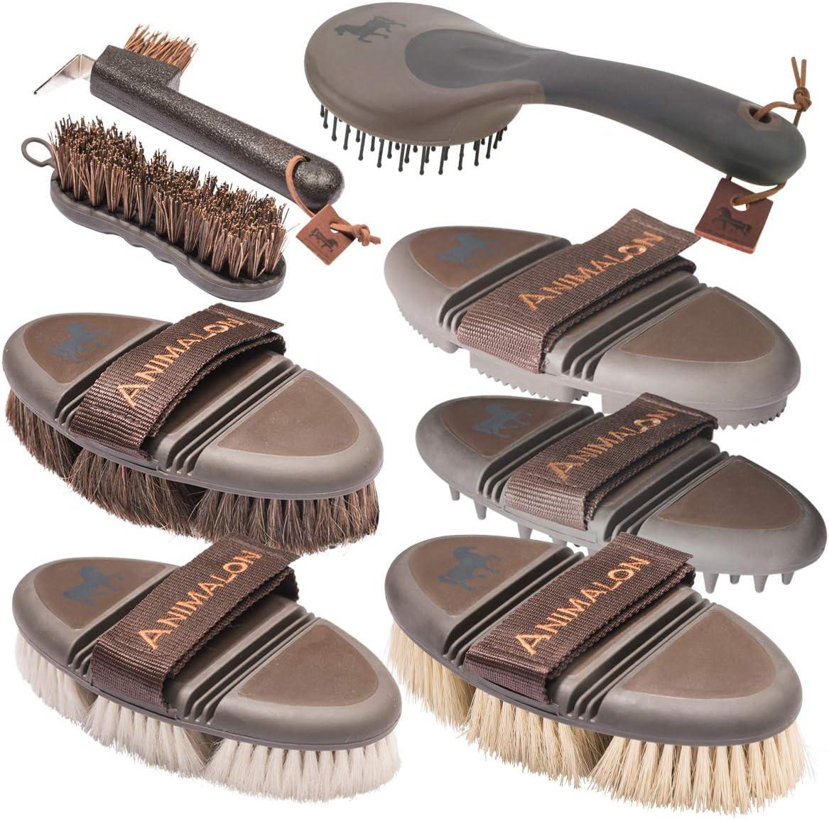 Animalon Deluxe Set | Cepillos de caballo en un set | palo de caballo, rascador de cascos, cepillo de pelo de caballo, cepillo para brillar, cepillo de aseo | Profesional de aseo Perde