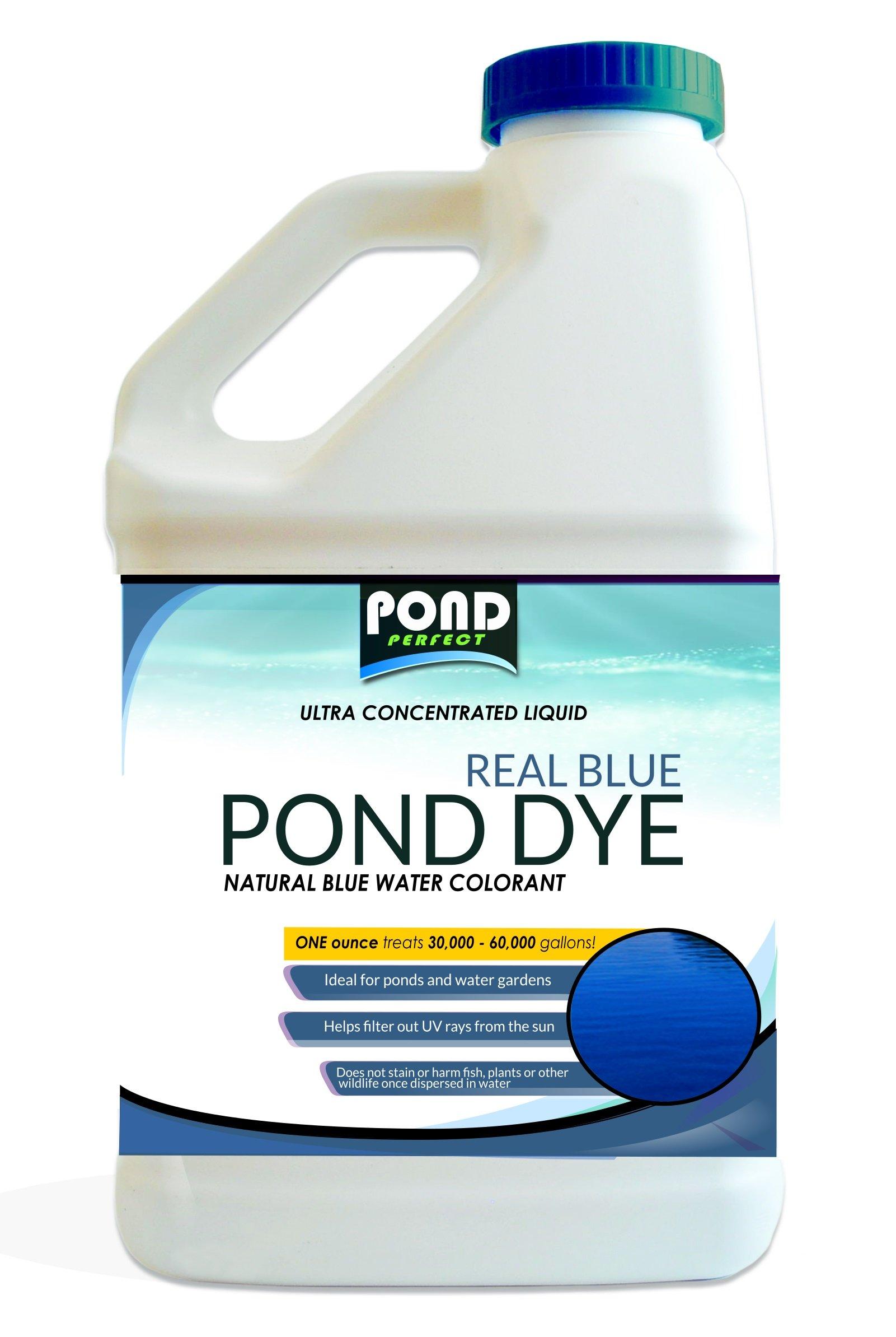 Pond Dye Maximum Concentrate Liquid