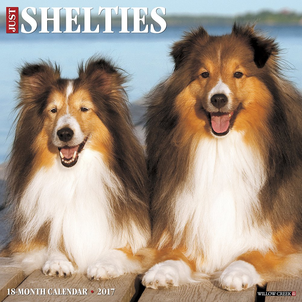 Just Shelties 2017 Wall Calendar (Dog Breed Calendars)
