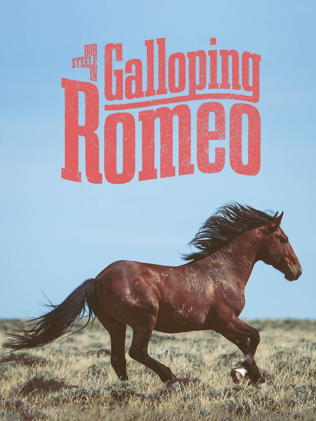 Galloping Romeo