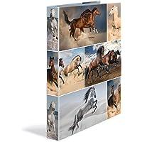 HERMA 19358ad anelli DIN A4Cartoncino, serie Animali, motivo: cane, 4Anelli, Dorso 35mm, 1cartella Stretta 4 anelli cavallo