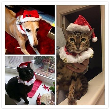 be2a7a84906d0 Image non disponible pour la couleur : Kungfu Mall 2pcs noël chien chat  chapeau de Santa collier avec cloche de Noël Costume set