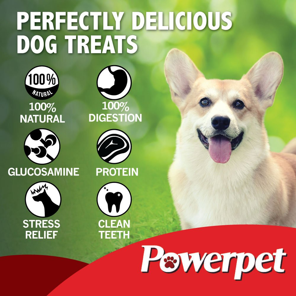 Powerpet: Value Pack - Natural Dog Chews - Helps Improve Dental Hygiene - 100% Natural & Highly Digestible - Protein with Low Fat - Smoked Beef Bone - Beef Jerky Bites, Trachea, Cheek Roll, Cow Tail by Powerpet (Image #4)