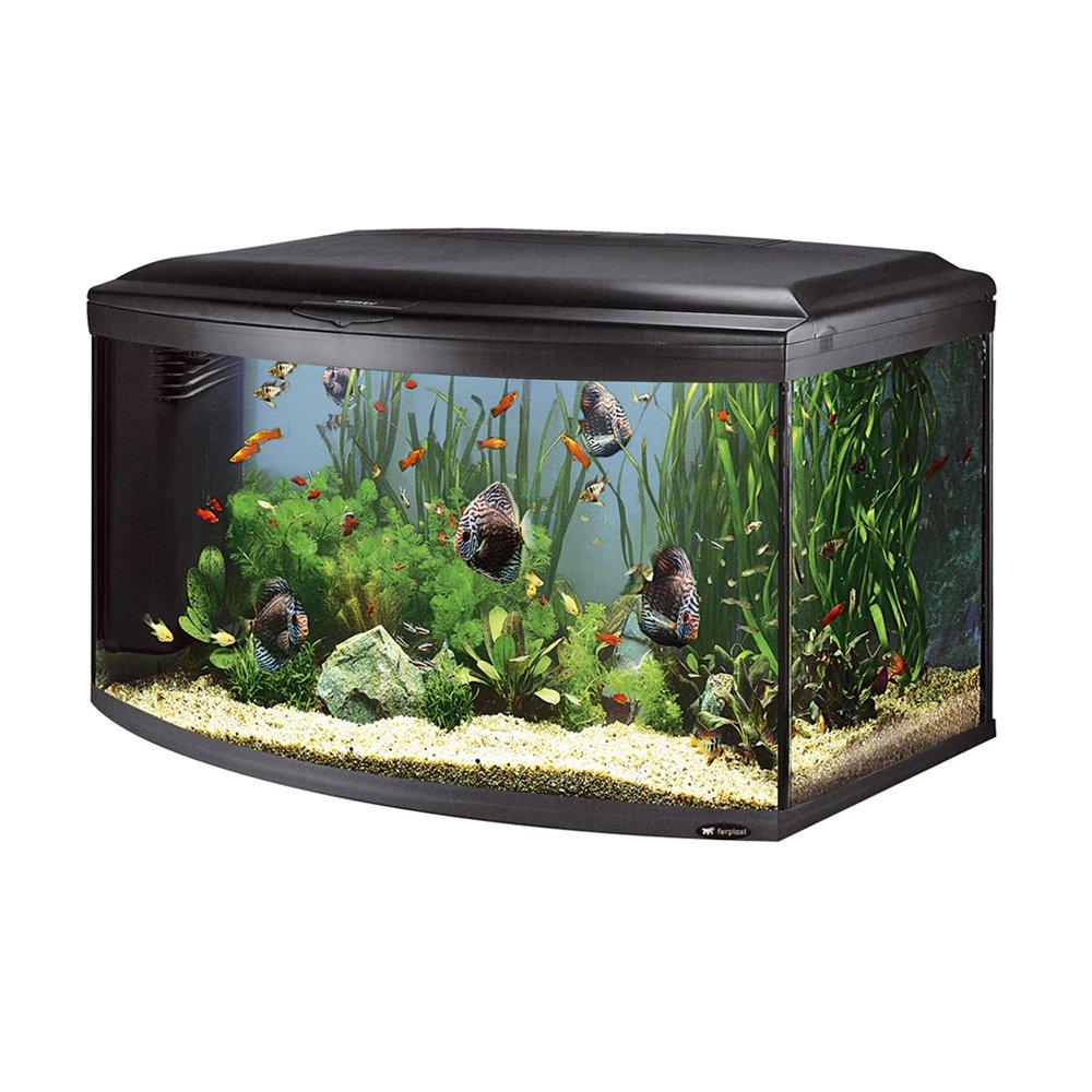 Ferplast Cayman 110 scenic 65112017 Aquarium Decoration Arched Front Panel Dimensions  110 X 55 X 61.5 cm 300 Litres black