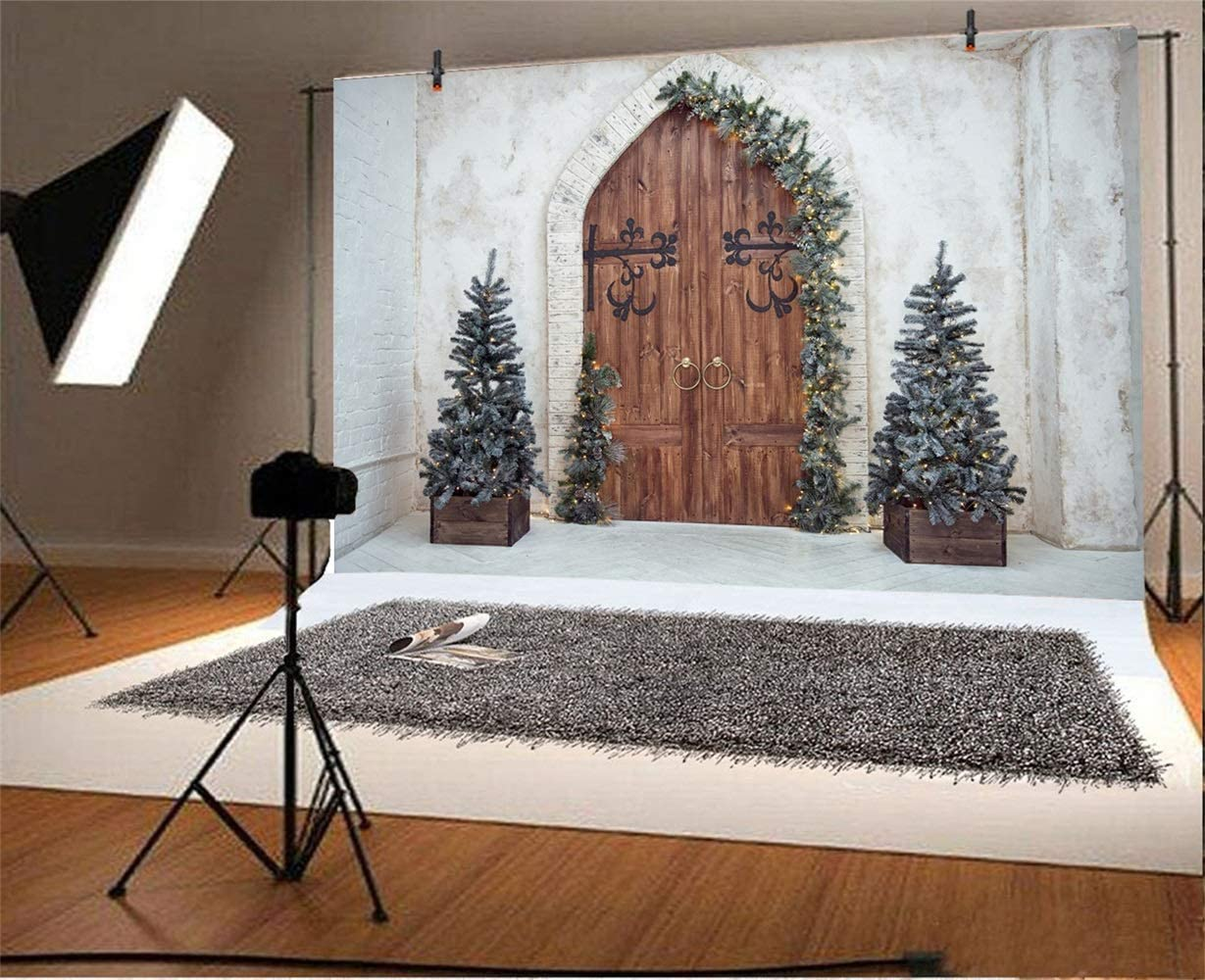 Christmas Theme Backdrop Vinyl 10x7ft Vintage Arch Wooden Door Front Xmas Trees Plain Lime Wall Photography Background Xmas Party Banner Child Kids Baby Portrait Shoot Wallpaper
