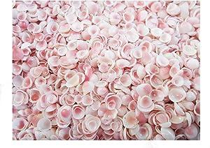 1 oz (500+) Tiny Apple Blossom Mini Shells 1/8-1/4