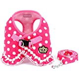 Brother cat Dog Small Dog Harness Pink Leash Set Ladies Polka Dot Vest Mesh Padded Lead for Pet Cat Puppy Girls S