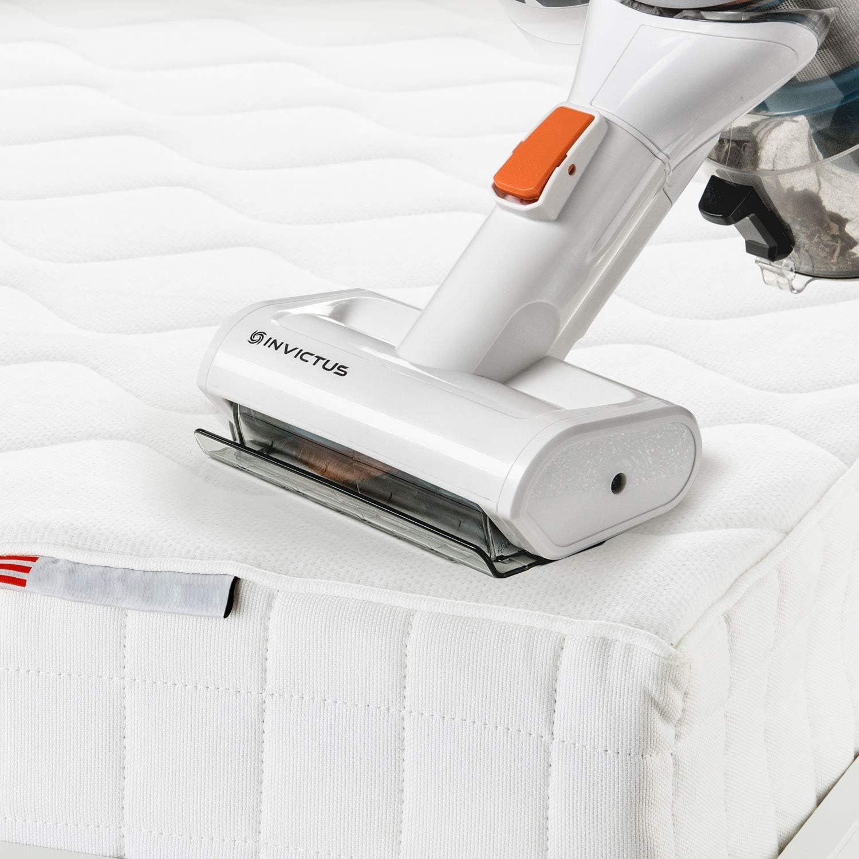 Genius Invictus X7 / X5 - Aspiradora con batería y cepillo eléctrico motorizado (8.000 rpm, ideal para limpiar tapicerías, alfombras y colchones): Amazon.es: Hogar