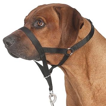 Arnes / Bozal para perros TRIXIE Entrenamiento Top Trainer