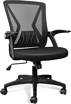 QOROOS Mid-Back Mesh Office Ergonomic Computer Chair