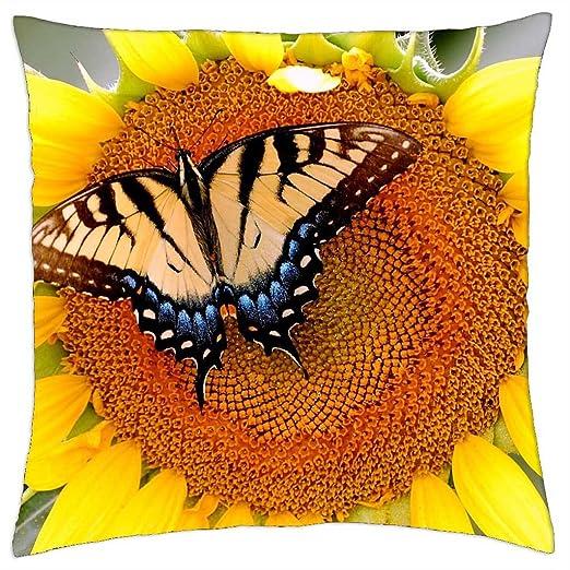 Girasol y - cojín con forma de mariposa (18: Amazon.es: Hogar