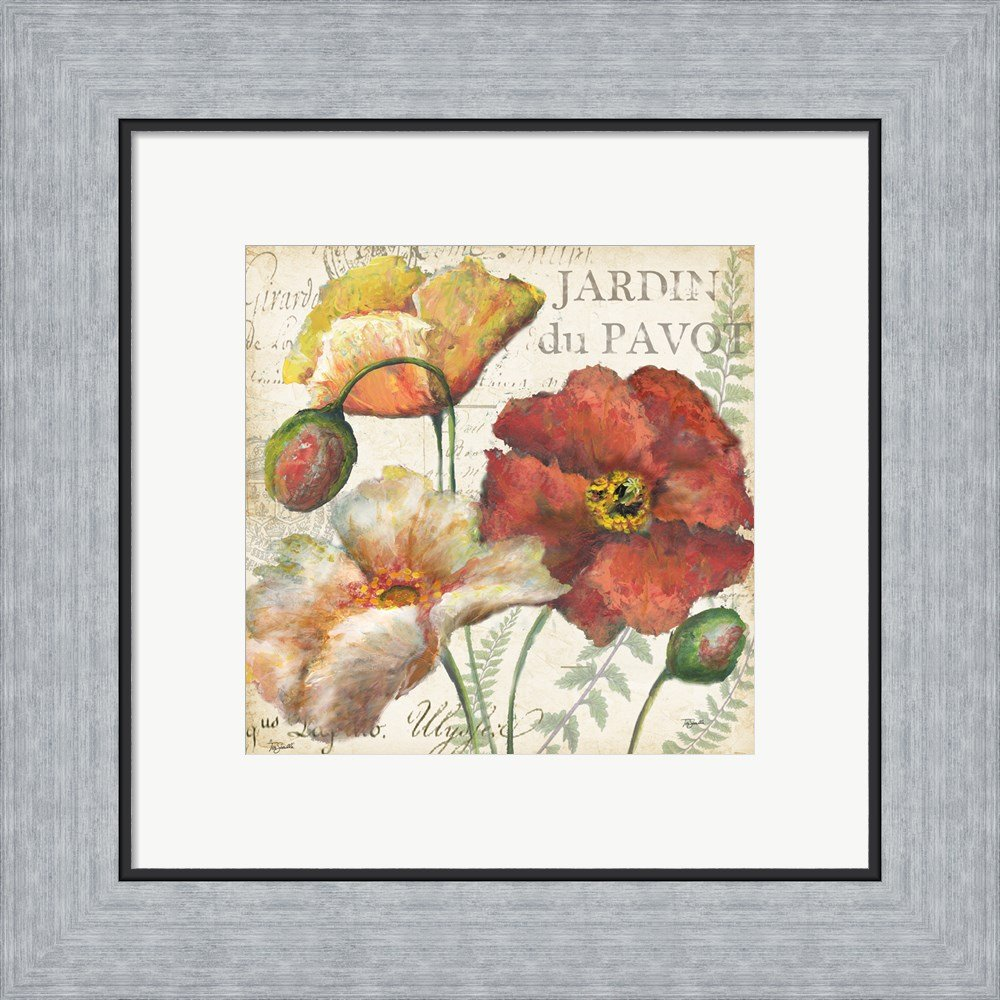 Amazon.com: Spice Poppies Histoire Naturelle II by Tre Sorelle Studios Canvas Art Wall Picture, Gallery Wrap, 24 x 24 inches: Posters & Prints