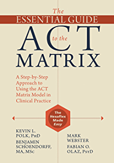 Learning rft an introduction to relational frame theory and its the essential guide to the act matrix a step by step approach to fandeluxe Gallery
