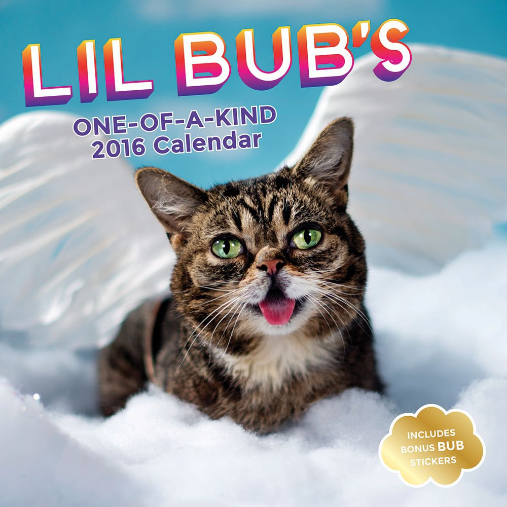 Lil Bub's One-of-A Kind 2016 Calendar (Abrams Calendars)