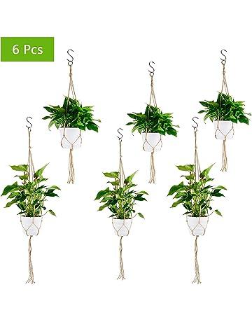 Amazon.es: Recipientes para plantas y accesorios: Jardín ...