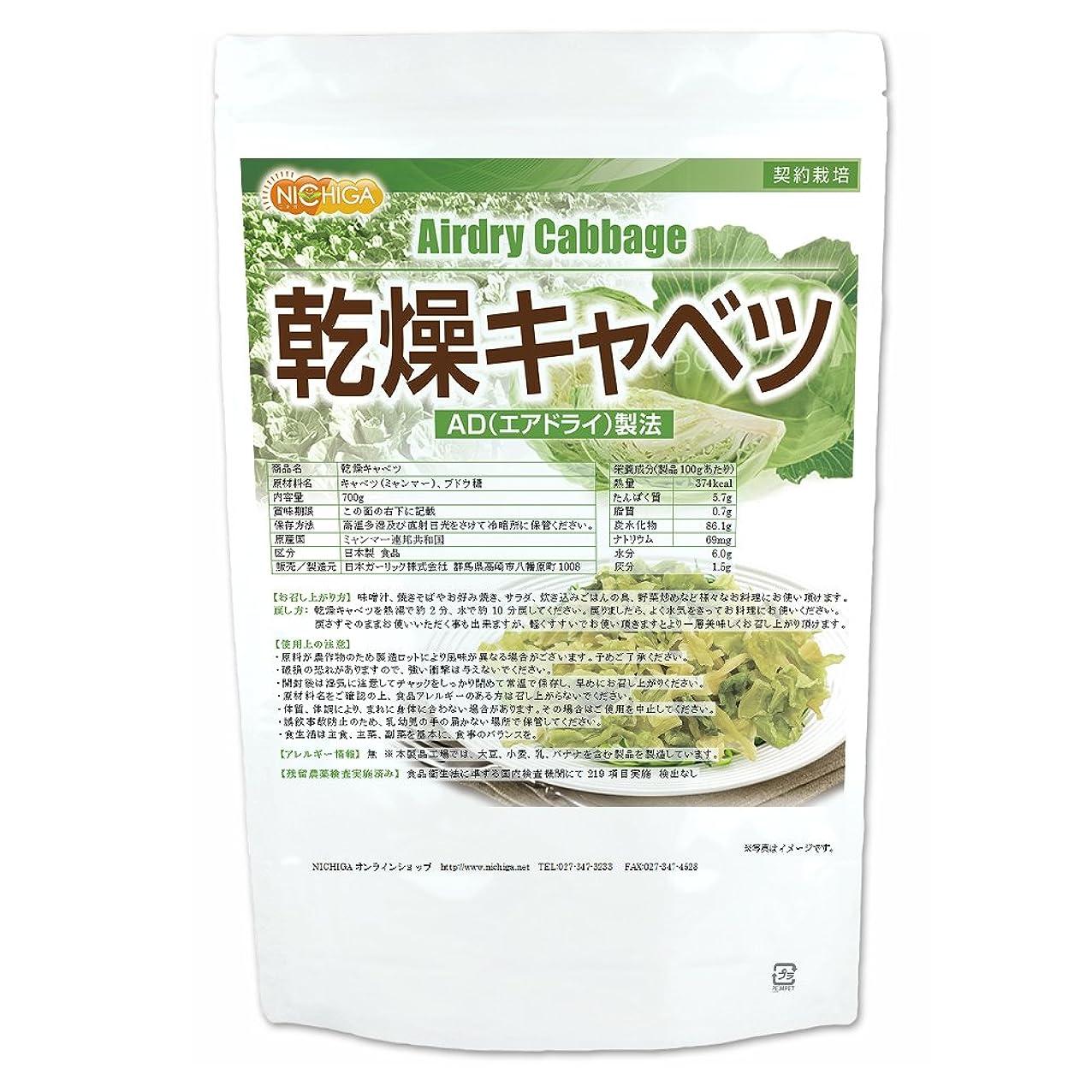 記念日引き付ける発信カネタ 徳用 野菜たっぷり味噌汁の具 100g×4個