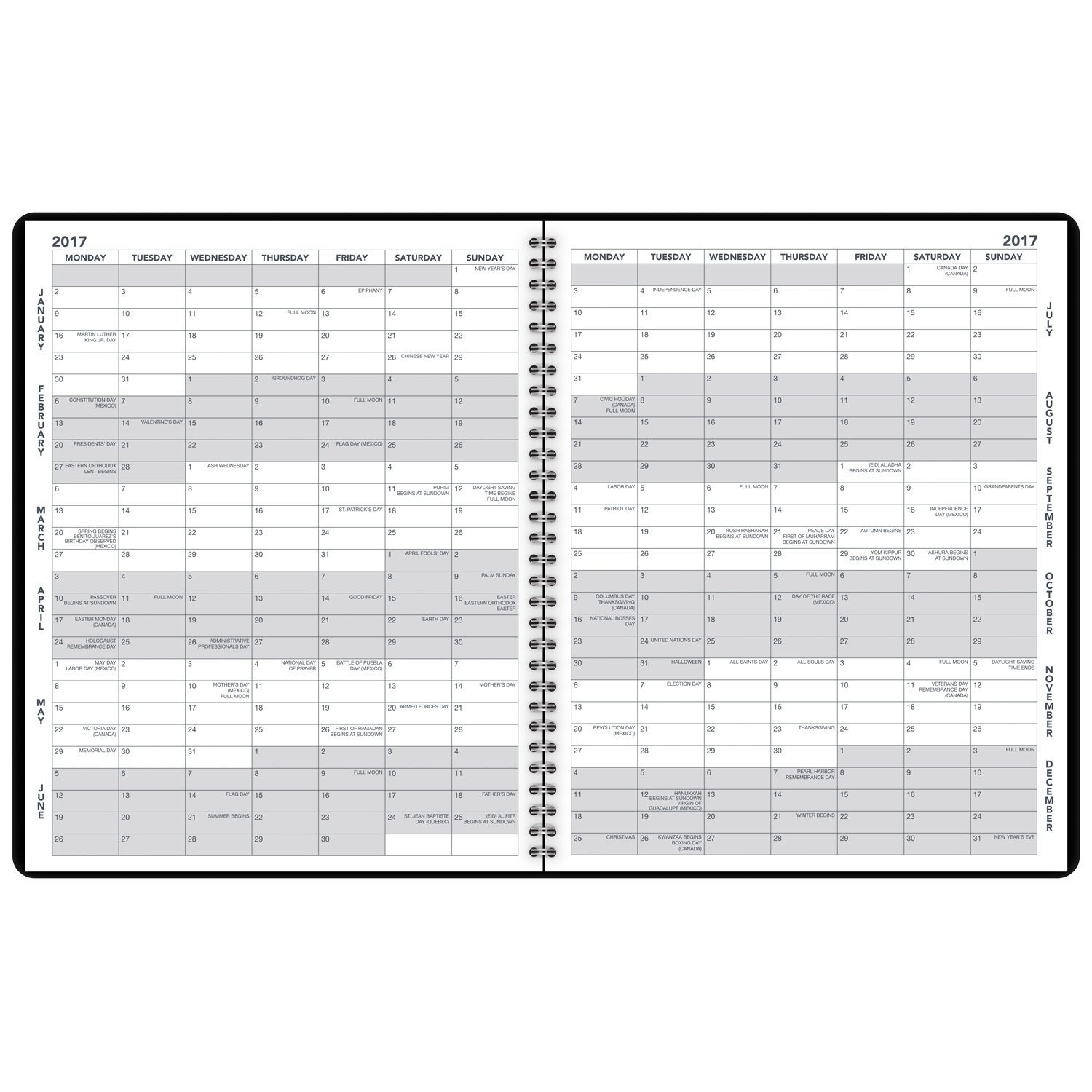 Amazon.com : AT-A-GLANCE Monthly Planner / Appointment Book 2017 ...