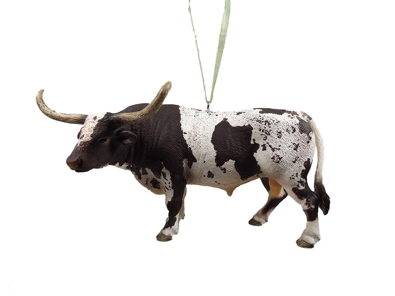 Male Texas Longhorn Bull Cattle