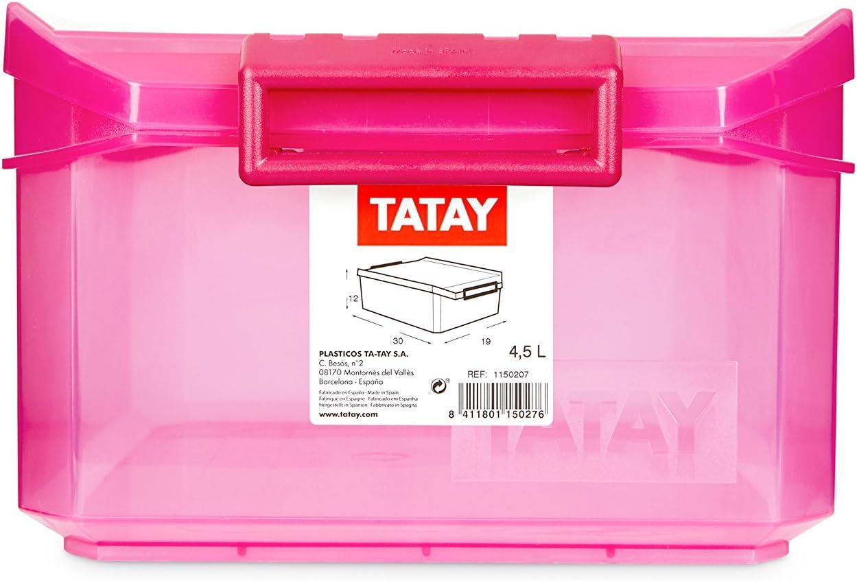 TATAY 1150212 - Caja de Almacenamiento Multiusos con Tapa, 4.5l de ...