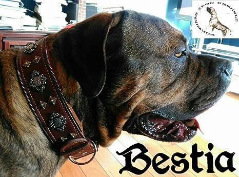 Bestia Collar de Perro Aztec de Cuero Genuino para Perros Grandes ...