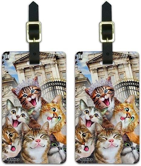 Amazon.com: Gatos selfie en Londres Palace Inglaterra Reino ...
