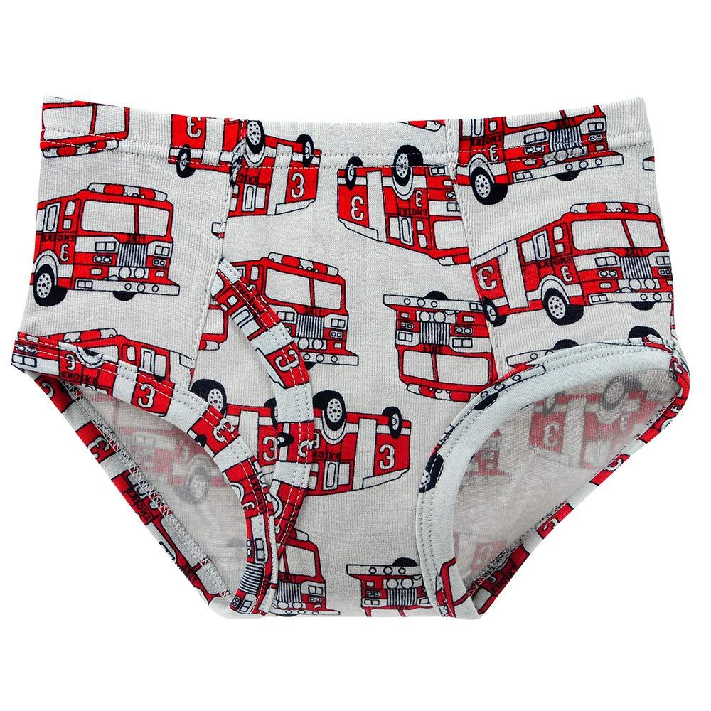 Closecret Kids Series Soft Cotton Underwear Little Boys' Assorted Briefs(Pack of 6)