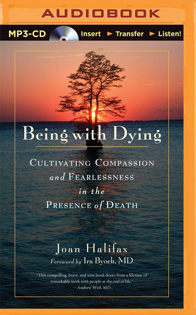 Read Online Being With Dying: Cultivating Compassion and Fearlessness in the Presence of Death pdf