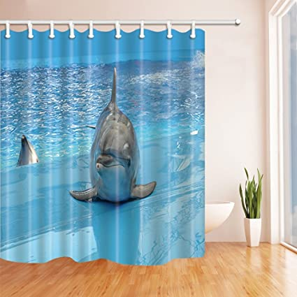 Amazon.com: HiSoho Dolphin Play in Swimming Pool Shower Curtain ...