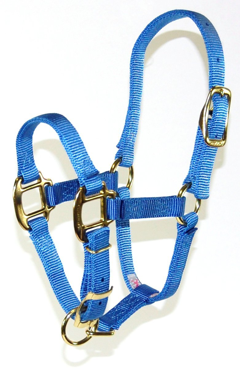Hamilton 3QA WNBY 3 4 Adjustable Quality Horse Halter, 200 to 300-Pound Weanling, Berry bluee