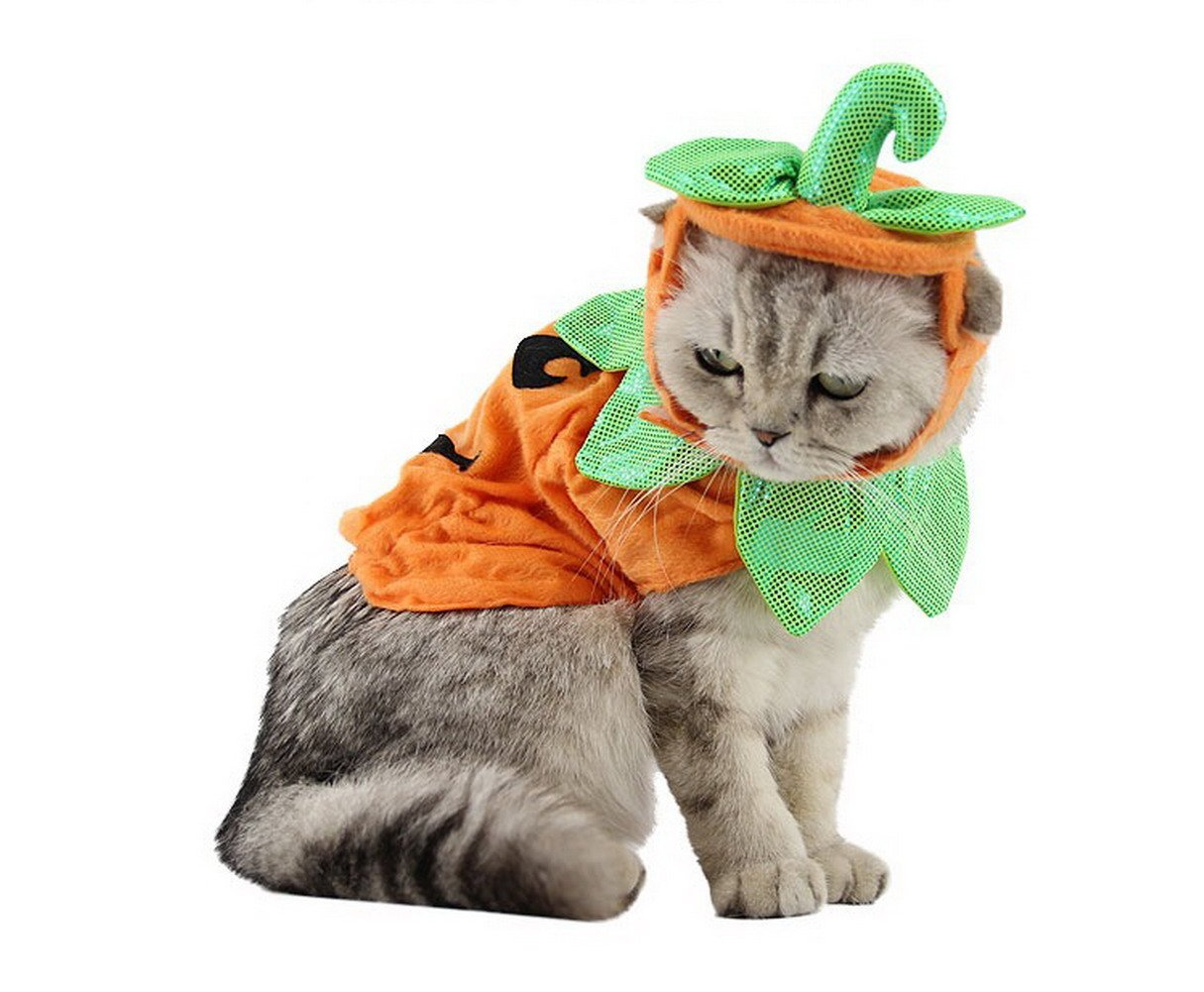 PET SHOW Cats Dogs Pumpkin Warm Adjustable Costumes Set with Hat for Pet Halloween Party Cosplay Accessories Outfits Apparel Headwear Pack of 1