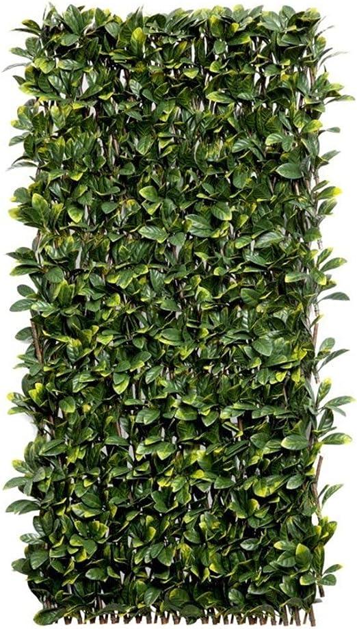 Faura - Celosia Extensible de Mimbre - Hoja Laurel: Amazon.es: Jardín