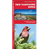 New Hampshire Birds: A Folding Pocket Guide to Familiar Species (Wildlife and Nature Identification)