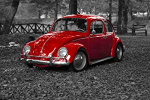 Gifts Delight Laminated 36x24 inches Poster: Vw Beetle Bug Vintage Vehicle Old Retro Transportation Car Volkswagen Drive Red