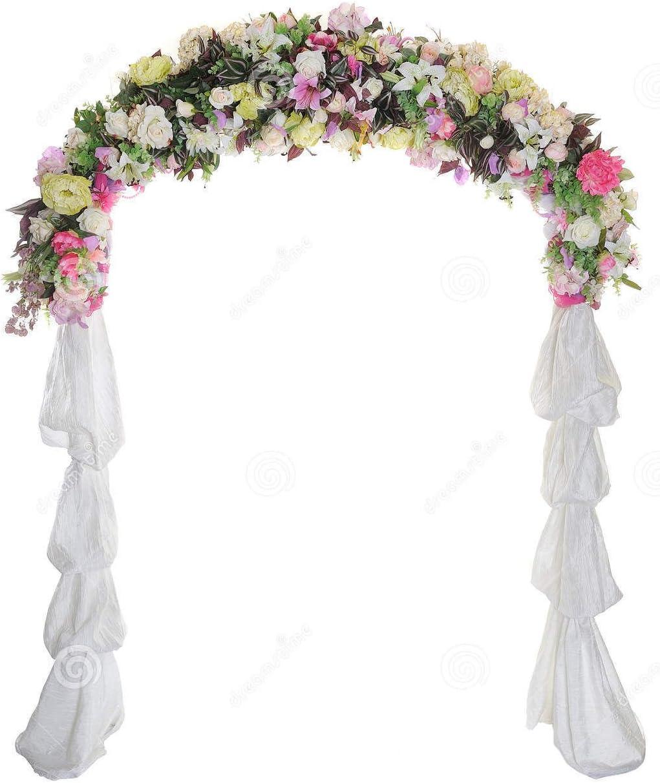 Nessagro Wedding Arch Way Garden Quinceanera Party Flowers Balloon Decoration White Metal .#GH45843 3468-T34562FD406659