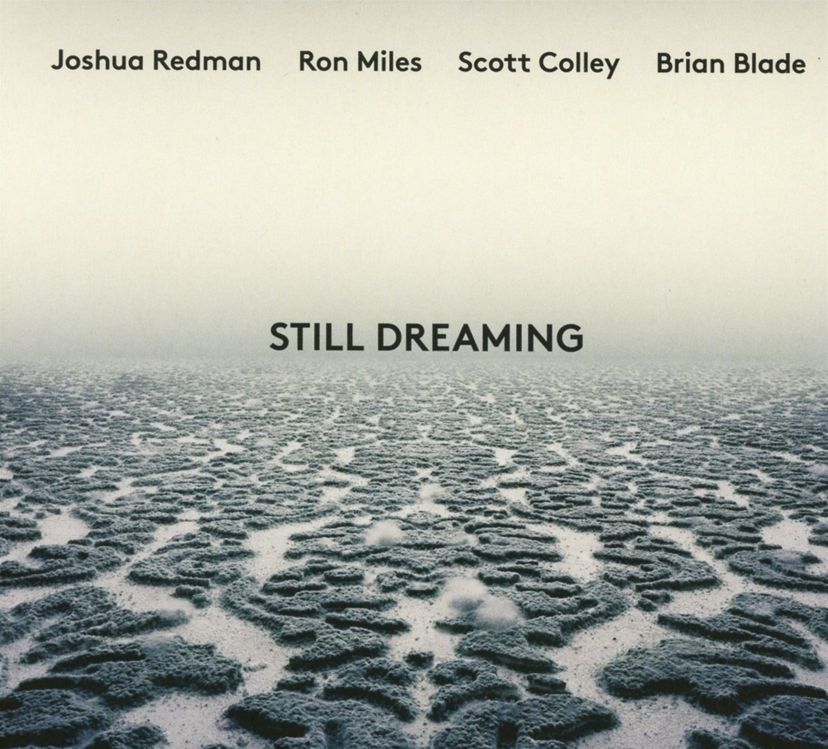 Still Dreaming feat. Ron Miles, Scott Colley & Brian Blade