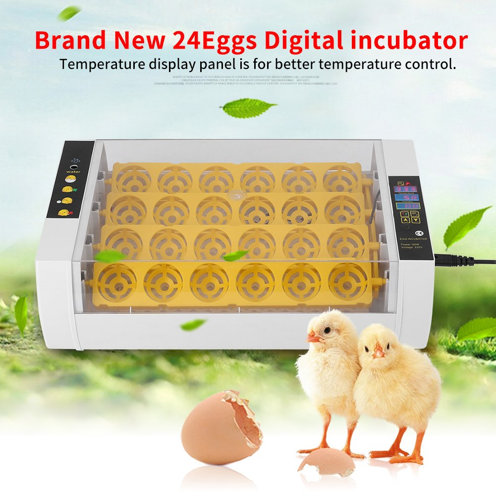 Incubator Hatcher, Intelligent Egg Incubator Automatic Egg Turning Auto Temperature Keep Humidity Control Easy to Observe 24 Eggs Poultry Hatcher with Digital Display for Chickens Ducks Goose Birds by Liusin