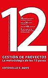 Gestión de Proyectos - La Metodología de los 12 pasos