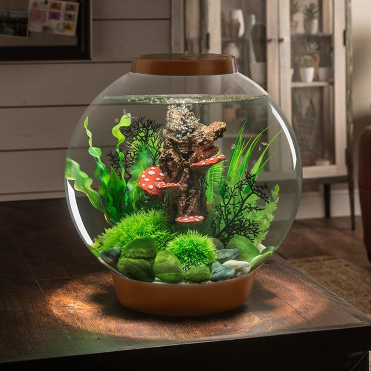 BiOrb Classic 30L Aquarium in Chocolate Brown with Standard LED Lighting