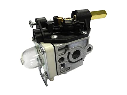 Amazon.com: Carburador Carb Para Echo srm-200 201 230 231 ...