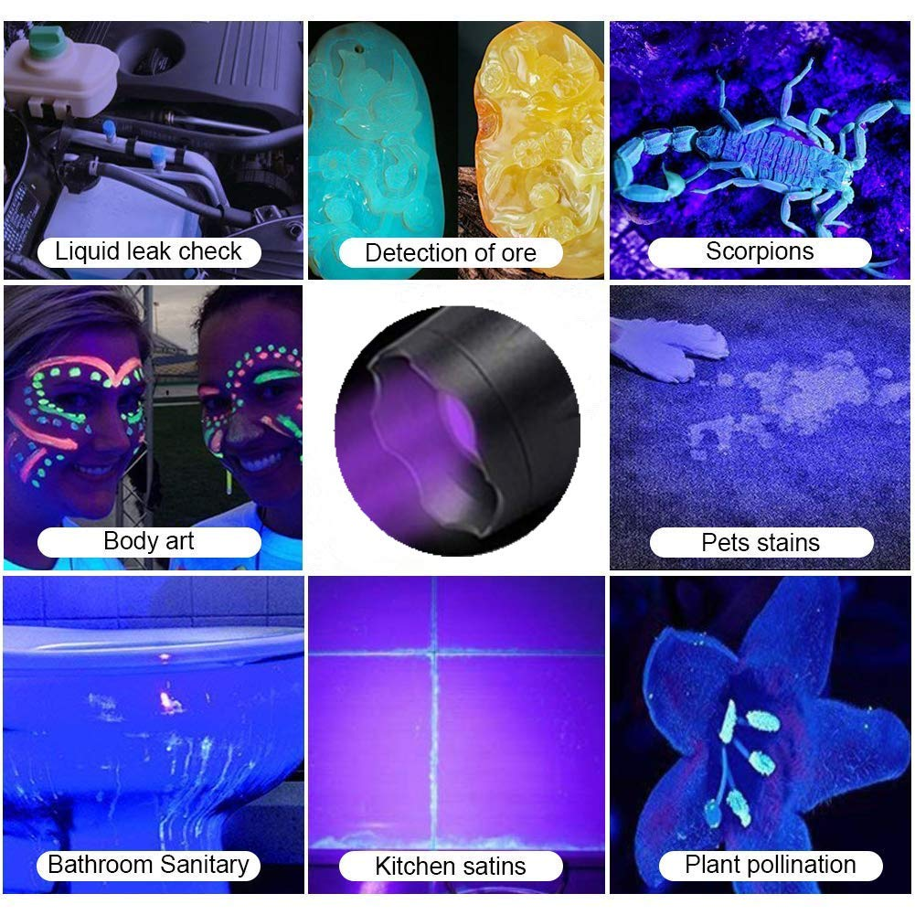 2 in 1 Pet Urine Detectors /& LED Tactical Flashlight Zoomable Scorpion UV Flashlight Black Light 5 Light Modes Dry Stains 500 Lumens 395nm Ultraviolet Blacklight for Dog//Cat Urine
