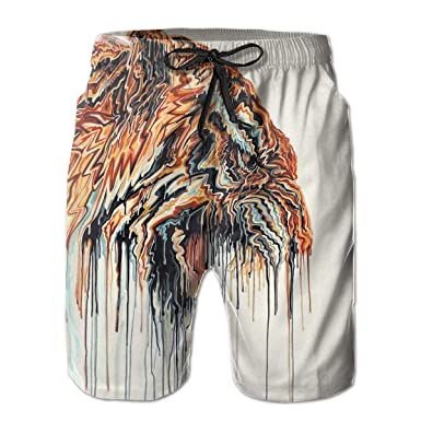 2a0697c7941 Mens 3D Printed Funny Swim Trunks Quick Dry Beachwear Sports Running Swim  Board Shorts Mesh Lining - Abstract Tiger Painting | Amazon.com