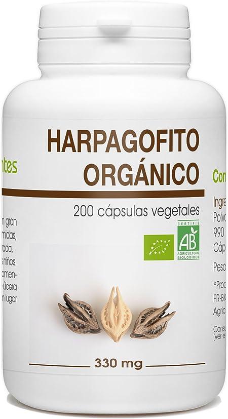 Garra del Diablo - Harpagofito Orgánico - Harpagophytum procumbens ...