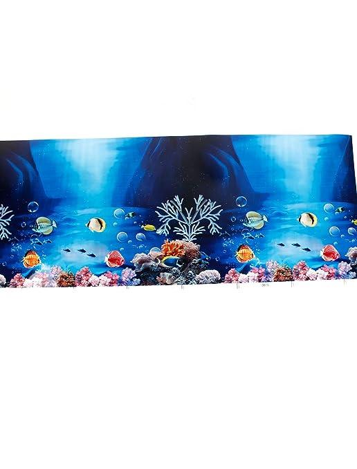 sourcingmap Pecera Plástica Natación Fondo Tropical Bajo El Agua Arte Imagen Vidrio Azul: Amazon.es: Productos para mascotas
