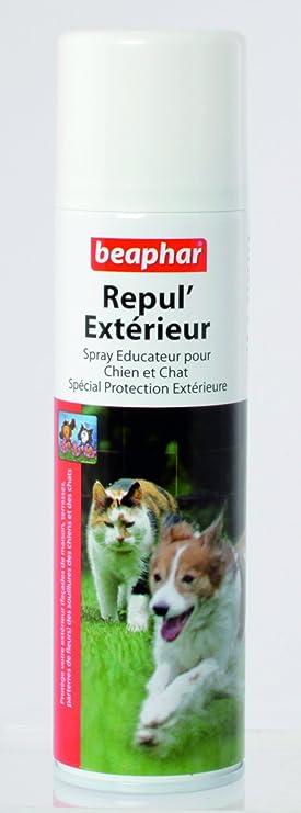 Beaphar Spray repelente de exteriores para perros y gatos 250 ml: Amazon.es: Productos para mascotas